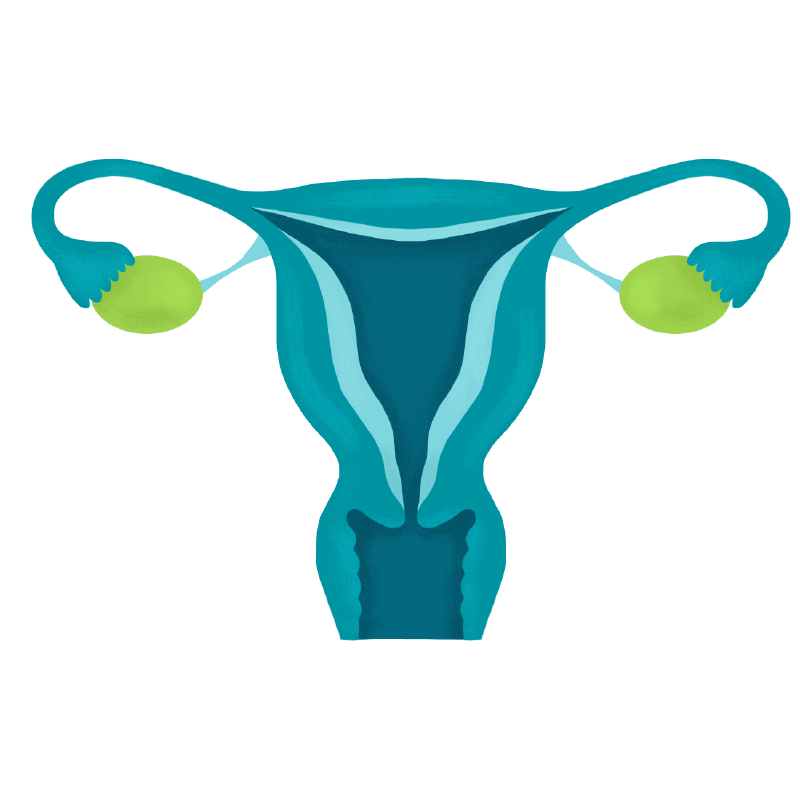 <div class='field' data-fieldid='22820' data-mediaid='' data-fieldcode='BannerCopy' data-arguments='{}'><h1>Ovarian Cancer</h1> <p>About 21% of ovarian cancer in Alberta is linked to factors we can change. That's about 42 cases we could prevent each year — if we work together.<sup>2</sup></p></div>